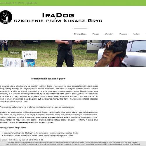 Szkolenia dla psów w Opolu